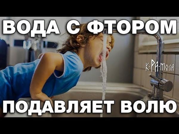 Как фторированная вода подавляет личность человека Фтор зубы и кариес Кто и зачем нас травит