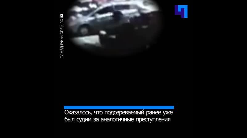 В Петербурге задержан барсеточник Шредингера