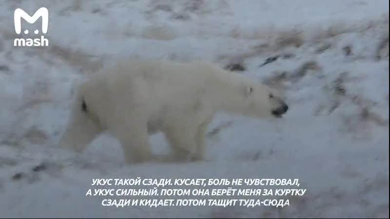 Житель Якутии выжил после схватки с белым медведем