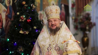 Поздравление с Рождеством Христовым. Архиепископ Сыктывкарский и Коми-Зырянский Питирим