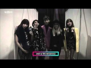 Mnet 새해인사 GD&TOP&대성cut