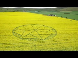 Crop Circle In Oilseed-Rape Stanton St Bernard Marlborough Reported 10/05/2021