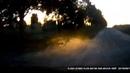 Веселый водитель/Травля бешеного зайца: и только ворота на погост спасли незадачливого спринтера!)
