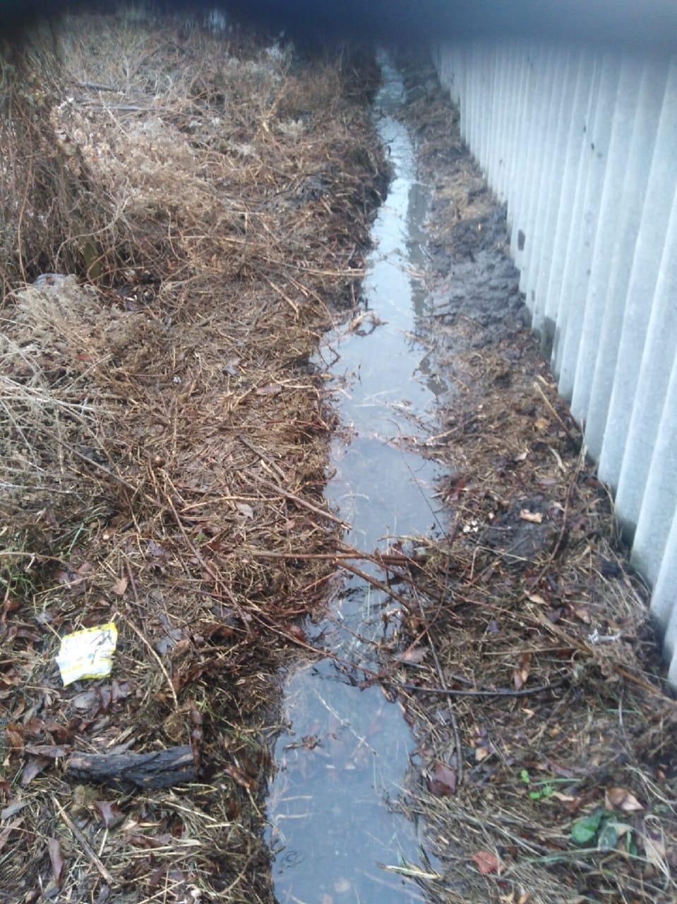 Интересно сколько ещё искусственных водоёмов в городе?
