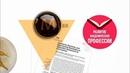 ResearcherID: как зарегистрировать профиль | Thomson Reuters | Лекториум