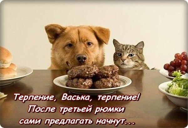 фото из альбома Сергея Андреева №4