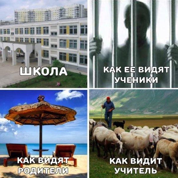 фото из альбома Артёма Кайманакова №2