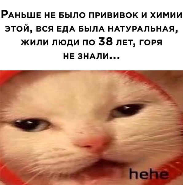 мемасик