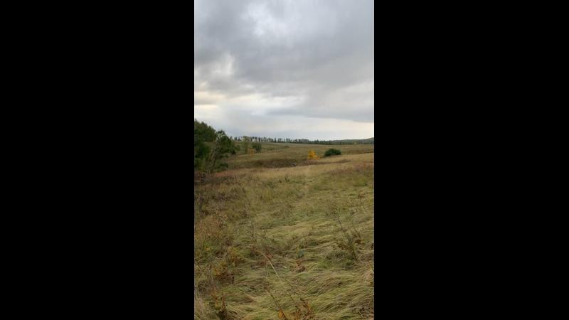 Видео от Олега Росланова