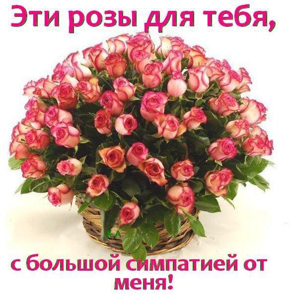 фото из альбома Насти Кузьминой №7