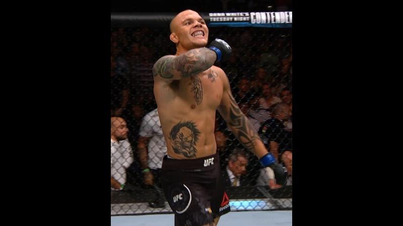 Лучшие финиши Энтони Смита в UFC