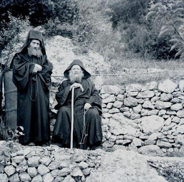 Один монах посадил оливковое деревце и стал молиться: Господи, пошли моему дерев...