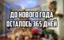 Гонак Миша   Мукачево   45