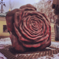 Елена Ивженкова фото №49