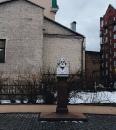 Март Светлана   Москва   37