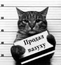 Персональный фотоальбом Анатолия Бельтюкова