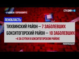 Коронавирус: информация по Бокситогорскому району на 17 апреля
