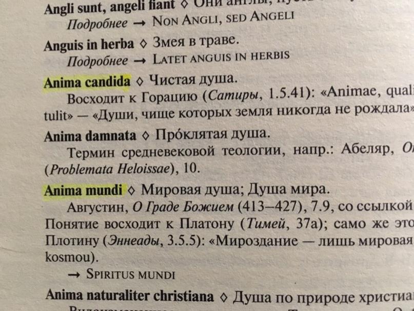 Mi ártalmas a prosztatitisre)