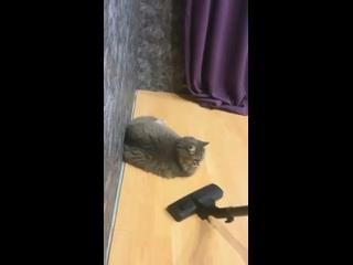 videopost kullanıcısından video