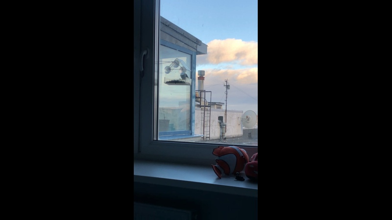 Видео от Эммы Галастян