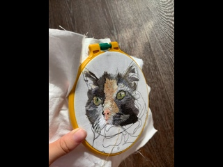 Усы Фени   Вышивка портретов животных