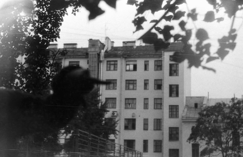 Палиндром, изображение №9