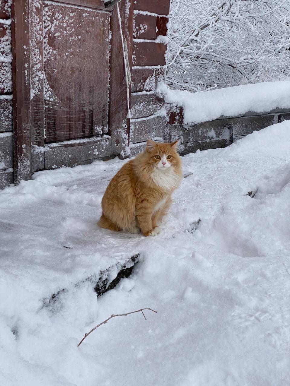 Зимняя сказка у Горы Белой