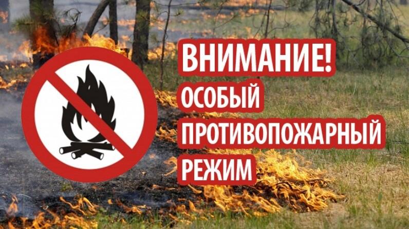 В регионе вводится особый противопожарный режим