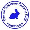 Ruspdd Com