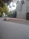 Светлана Зеленкова фотография #38