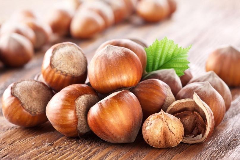 Фундук – самый используемый и любимый вид орехов