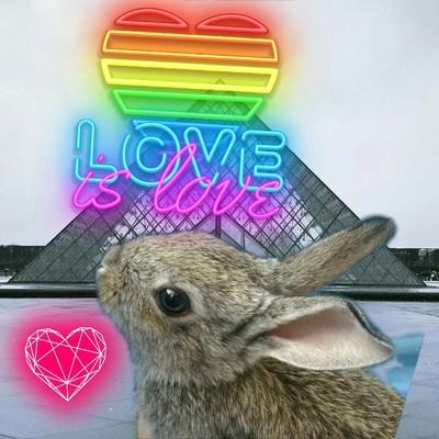 Ушастик Кроля