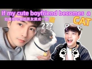 If my cute boyfriend becomes a cat🐱   男友是隻貓[Gay Couple Lucas&Kibo]