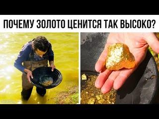 Золото — не такой уж редкий металл, но почему оно стоит так дорого?