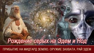 Рождение серых на Эдем и Нод=Прибытие на Мидгард Землю=Оружие захвата=Рай=Эдем=Уроки Асгарда