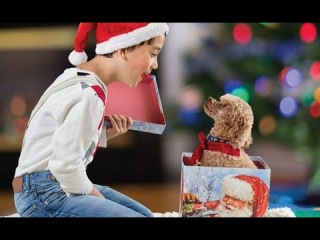 Getting a Puppy for Christmas Compilation 2014