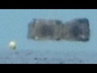 Strange objects caught on camera in Sarasota Florida ocean