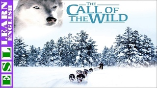 Learn English Through Story ☆ Subtitles ☂ The Call of The Wild