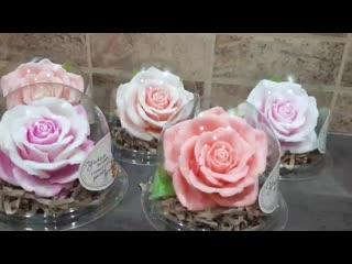 Роза Пышная в куполе
