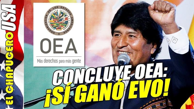 OEA confirma ¡que ganó Evo Morales! No hubo fraude como afirman golpistas