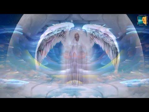 Будущее человечества и высший божественный план Естественный отбор на планете Земля