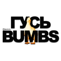 Логотип Гусь Bumbs