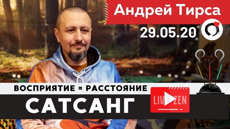Андрей Тирса Сатсанг Восприятие 29 мая 2020