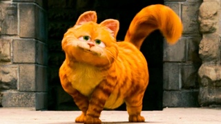 """GARFIELD: A TAIL OF TWO KITTIES Clip - """"Favorite Cat"""" (2006)"""