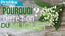 Pourquoi offre-t-on du muguet le 1er Mai ?